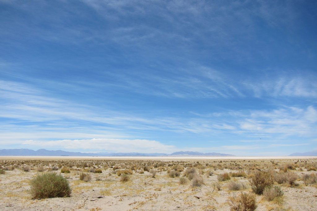 Background image: Puna, northern Argentina. Taken whilst travelling November 2010